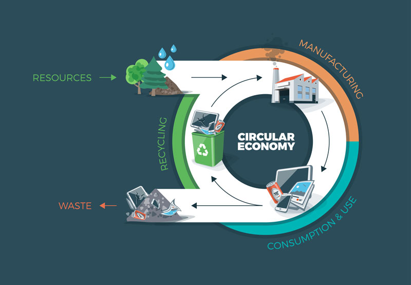 value_chain_of_a_company_and_a_circular_economy_800